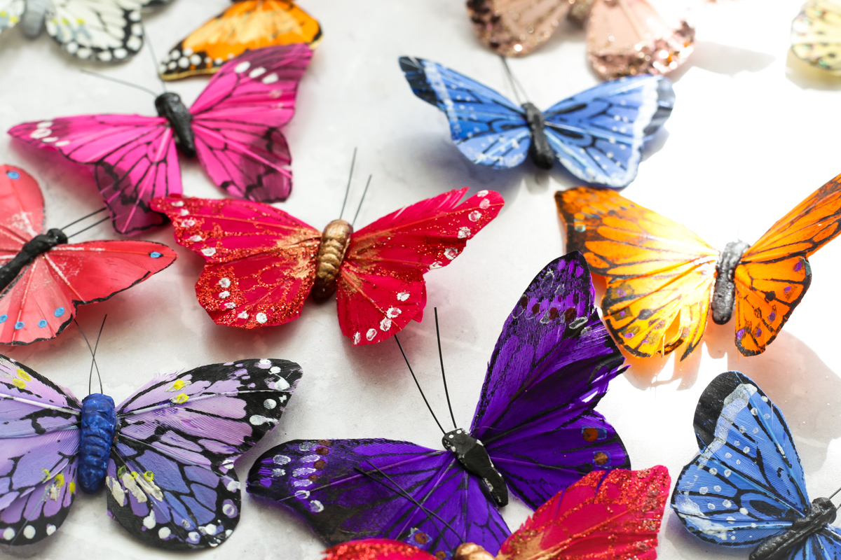 Blog Photography | Four Photo Styling Props I Love feat coloured butterflies